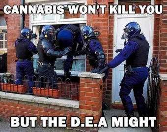 Dea may kill you.jpg
