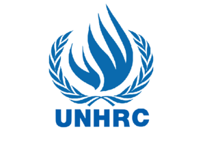 File:UN Human Rights Council.png
